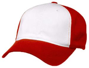 WHITE PANEL/RED CAP