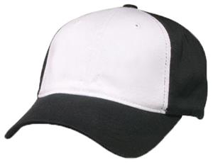 WHITE PANEL/BLACK CAP