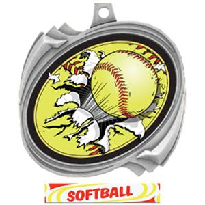 SILVER/DELUXE SOFTBALL RIBBON