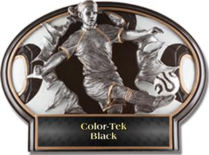 BLACK COLOR-TEK LABEL