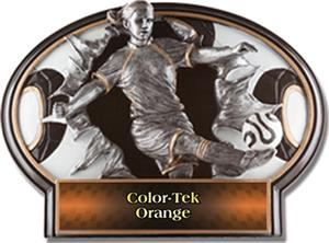 ORANGE COLOR-TEK LABEL
