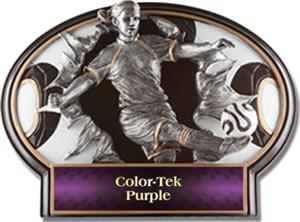PURPLE COLOR-TEK LABEL
