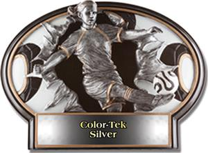 SILVER COLOR-TEK LABEL
