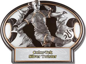 SILVER COLOR-TEK TWISTER LABEL