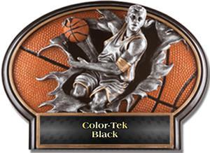 BLACK COLOR-TEK LABEL