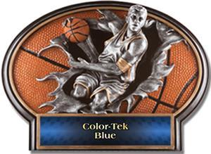 BLUE COLOR-TEK LABEL