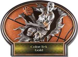GOLD COLOR-TEK LABEL