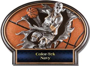NAVY COLOR-TEK LABEL
