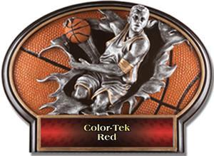 RED COLOR-TEK LABEL