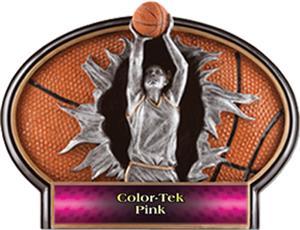 PINK COLOR-TEK LABEL