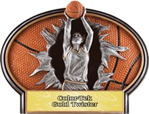 GOLD COLOR-TEK TWISTER LABEL