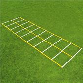 Fisher 15' Double Speed Ladders