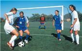 """ShootOut 2""""x4"""" SQ Portable Aluminum Soccer Goals"""