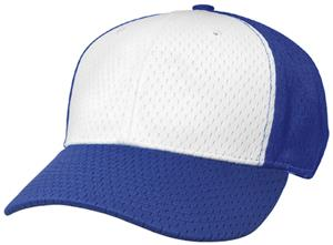 (ALTERN.) WHITE FRONT PANEL/ROYAL HAT