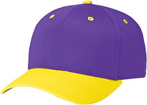 (COMBO) PURPLE CROWN / GOLD VISOR