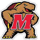 "COLLEGIATE Maryland 12"" Vinyl Magnet"