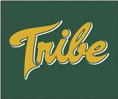 Fan Mats College of William & Mary Tailgater Mat