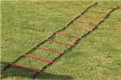 Gill Athletics PowerMax 30' Agility Ladder