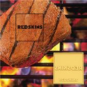 Fan Mats Washington Redskins Fan Brand