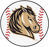 Fan Mats Southwest Minnesota State Baseball Mat