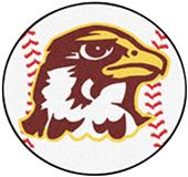 Fan Mats Quincy University Baseball Mat