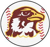 Fan Mats Quincy University Baseball Mat