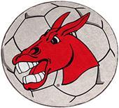 Fan Mats Univ. of Central Missouri Soccer Ball Mat