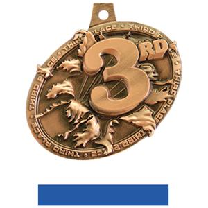 BRONZE MEDAL/BLUE NECK RIBBON