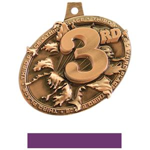 BRONZE MEDAL/PURPLE NECK RIBBON
