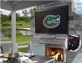 Holland University of Florida TV Cover