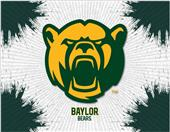 Holland Baylor University Printed Canvas Art