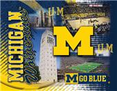 Holland University of Michigan Printed Canvas Art