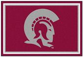 Fan Mats University of Arkansas Littlerock 5x8 Rug