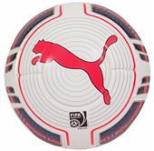 Puma evoPOWER 1 FIFA Soccer Ball Closeout