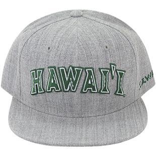 University of Hawaii Game Day Snapback Cap