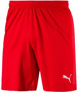 Puma Mens Final Evoknit Shorts