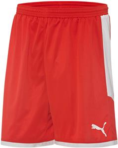 Puma Mens Borussia Shorts
