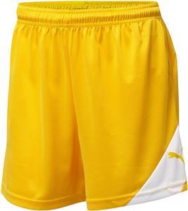Puma Womens Santiago TG Shorts