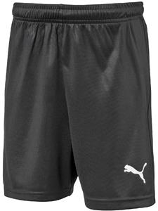 Puma Mens Liga Core Shorts