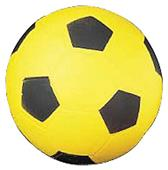 Champion Sports High Density Foam Soccer Balls
