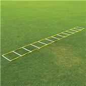 Fisher 20' Single Speed Ladders