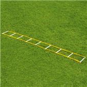 Fisher 12' Single Speed Ladders