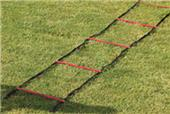"Gill Athletics PowerMax 37'6"" Acceleration Ladder"
