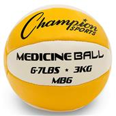 Champion Sports Leather Medicine Balls