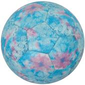 Vizari Freesia 32 Panel Practice Soccer Balls