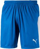 Puma Mens Liga Shorts