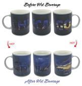 Sunkiss Chicago Skyline ThermoH Exray Mug