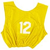 Champion Numbered Heavyweight Pinnies (DOZENS)