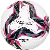 Soccer Innovations Momentum Mini Soccer Ball